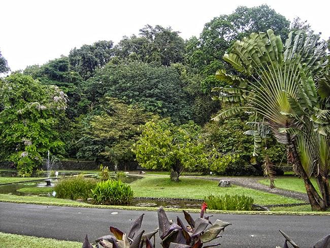 Visita al jard n bot nico de bogor indonesia indonesia for Como ir al jardin botanico