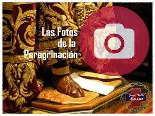 Fotos de la Peregrinación 2014