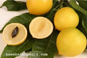 Manfaat buah abiu