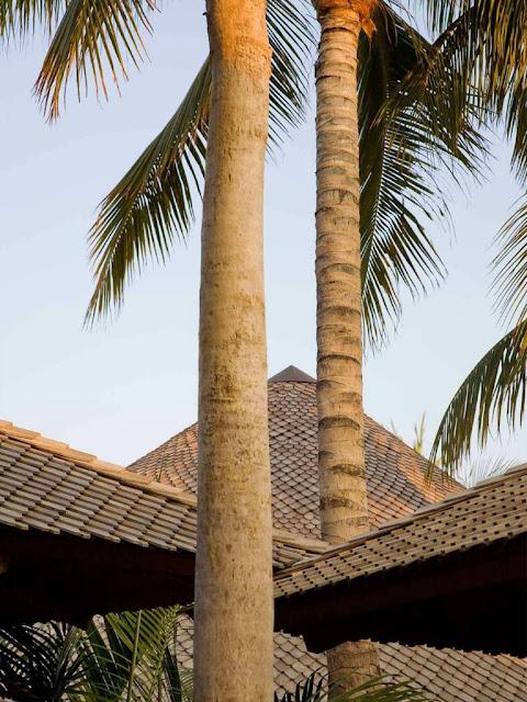 Tropical Stone House Exterior