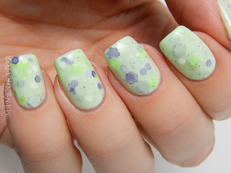 KBShimmer_Spring_2014_Daisy_About_You