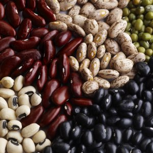 Gastronom a de m xico y la cocina molecular los frijoles for Gastronomia molecular pdf
