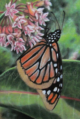 Progress of monarch butterfly painting in progress by Colette Theriault