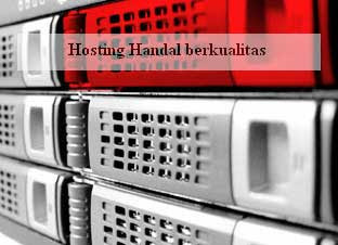 cara web hosting