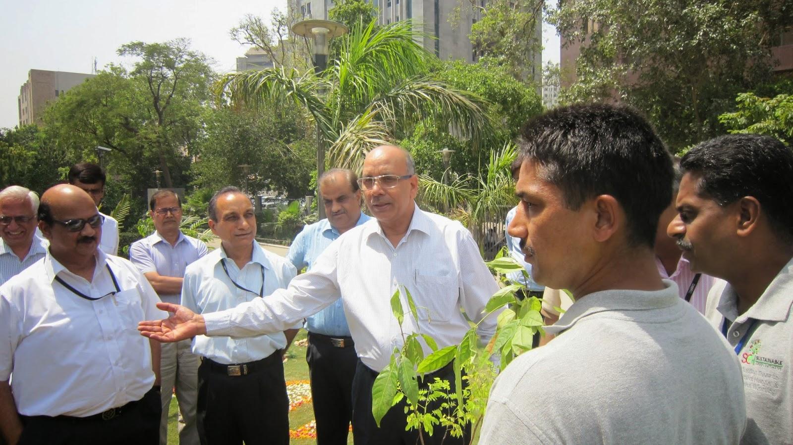 Delhi Metro MD Mangu Singh planting sandal wood trees