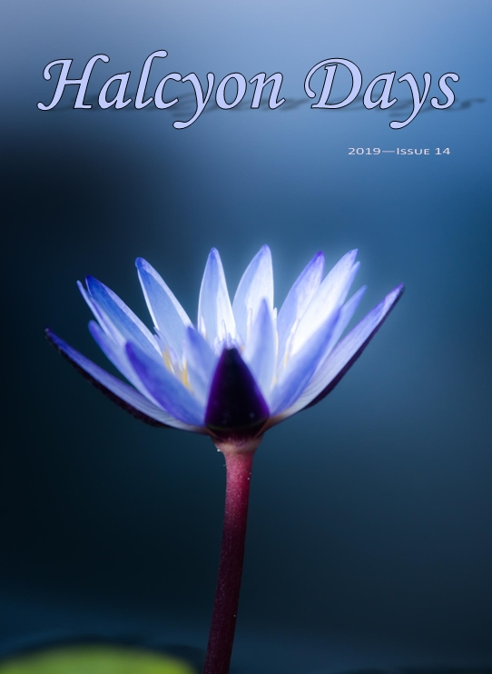 Halcyon Days Issue 14