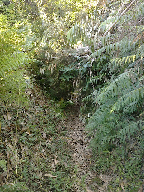 Camino bloqueado PR-G 17 Arredor de Cambre