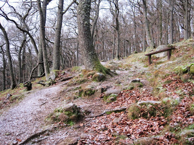 The walk up Craigendarroch on Deeside