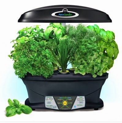 Use an Aerogarden to grow herbs inside!