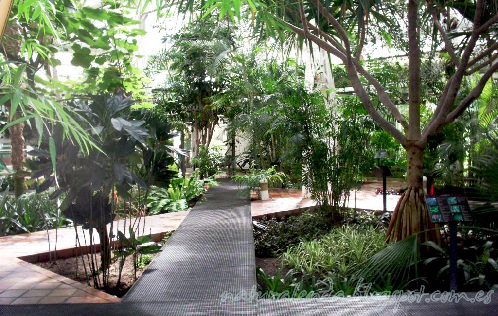 invernadero tropical