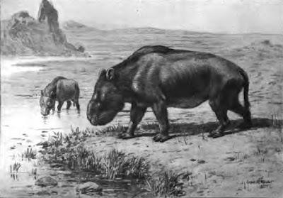 mamiferos prehistoricos de argentina Nesodon