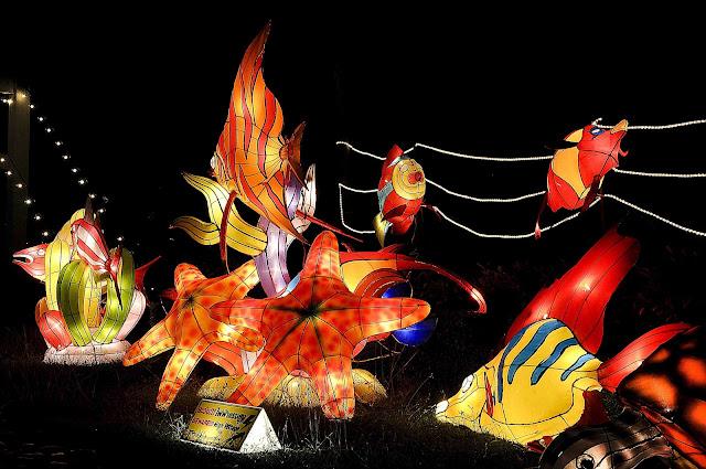 Lantern Festival Hat Yai أجمل مهرجانات العالم ''مهرجان المصابيح في تايلند '' سيذكرك بفيلم ديزني الشهير Tangled