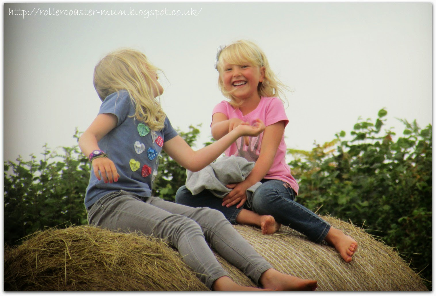 uses for straw bales