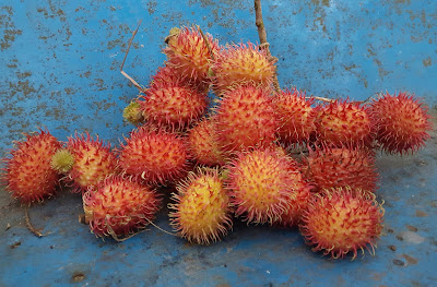 Rambutan is Good for Women Pregnancy