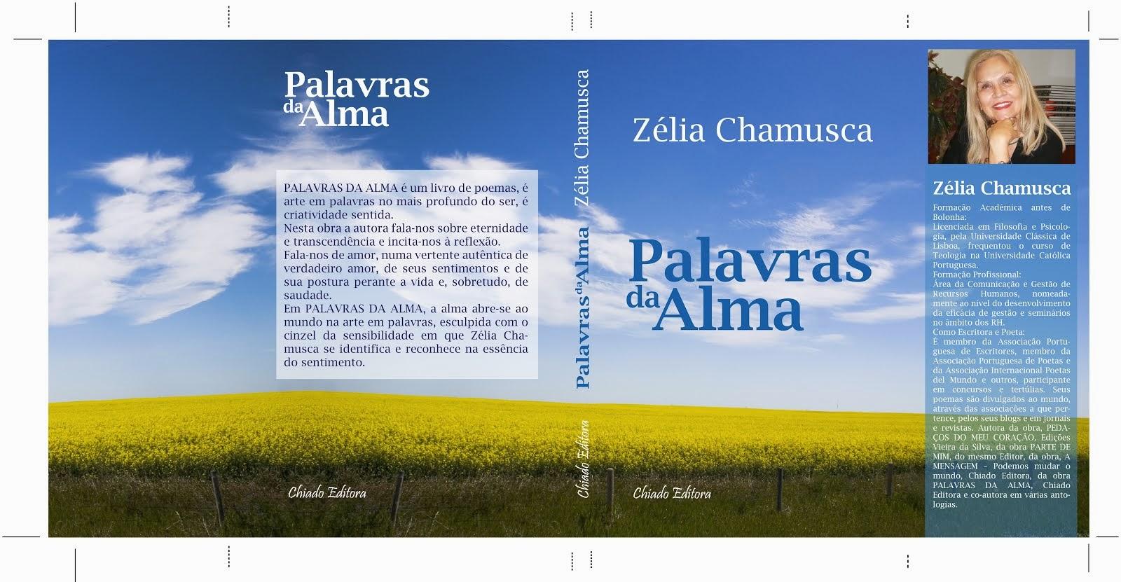 PALAVRAS DA ALMA