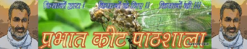 PRABHAT KEET PATHSHALA