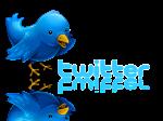 Click En Twitter