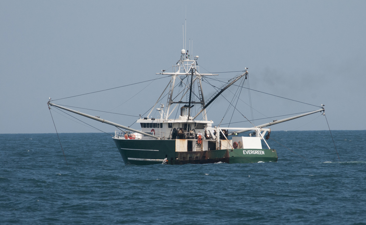 Welcome to book review a sea in flames for Commercial fishing boats