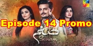 Sanam Episode 14 Promo Full by Hum Tv