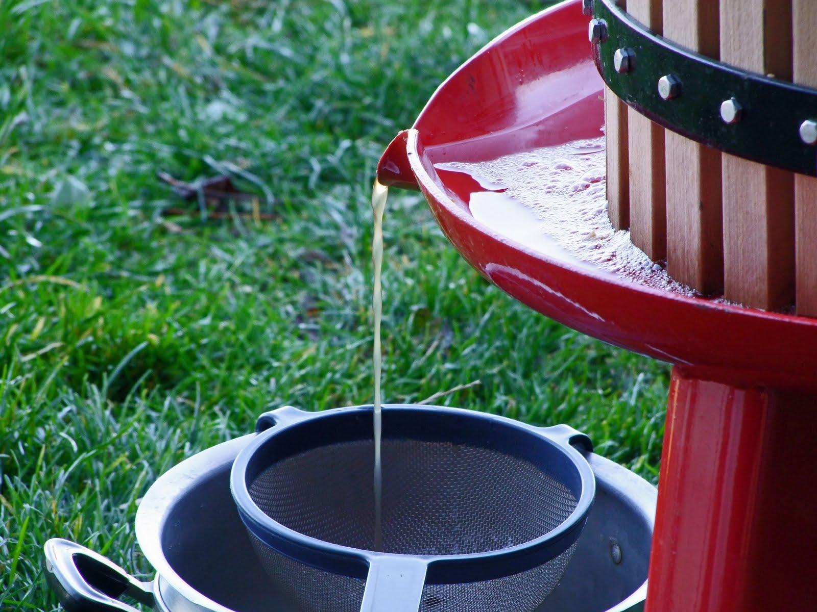 Pompe aux pommes et jus de pomme maison - Jus de pomme maison sans centrifugeuse ...