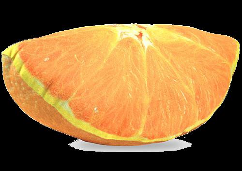 Almofada gomo de laranja