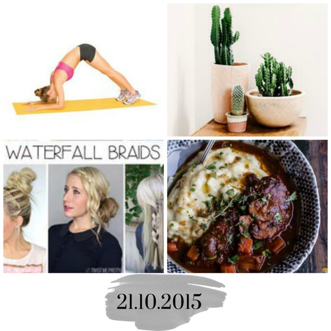Midweek reading | 4 basic braids, yoga to perk up your boobs, best plants to grow indoors and amazing 1 pot coq au vin