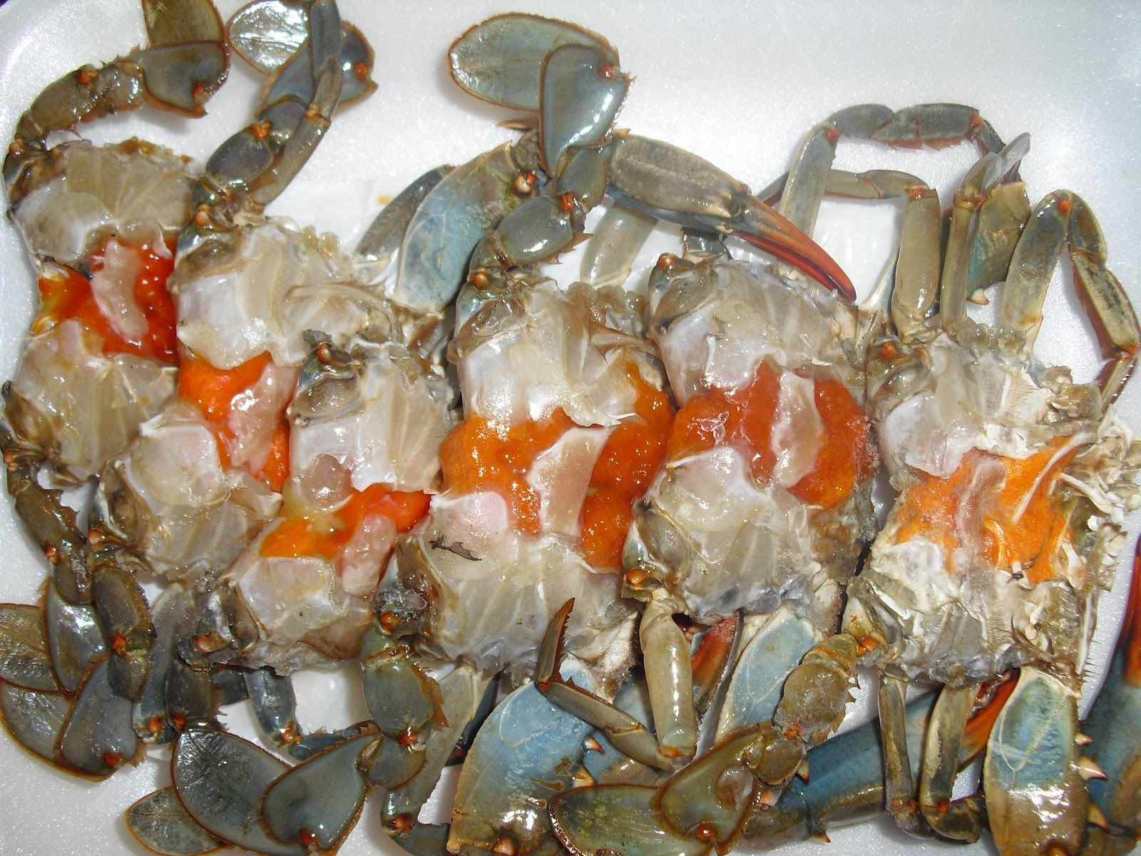 Blue Crab String Lights : Shoe Laces & Apron Strings: Blue Crabs in Black Bean Sauce