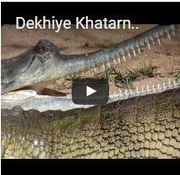 Dekhiye Khatarnak Ghariyal Ko