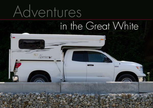Travels in the Great White