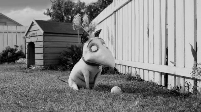 Hình ảnh phim Chó Ma Nhà Frankenstein