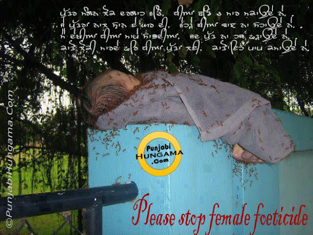 Please Stop Female Foeticide