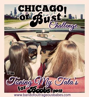 http://2.bp.blogspot.com/-DIyI60gE3MM/T_z12XSXOoI/AAAAAAAACOk/hUz0QczopMg/s1600/Chicago+or+Bust+Challenge+Button.jpg