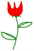 A rosa bonita.