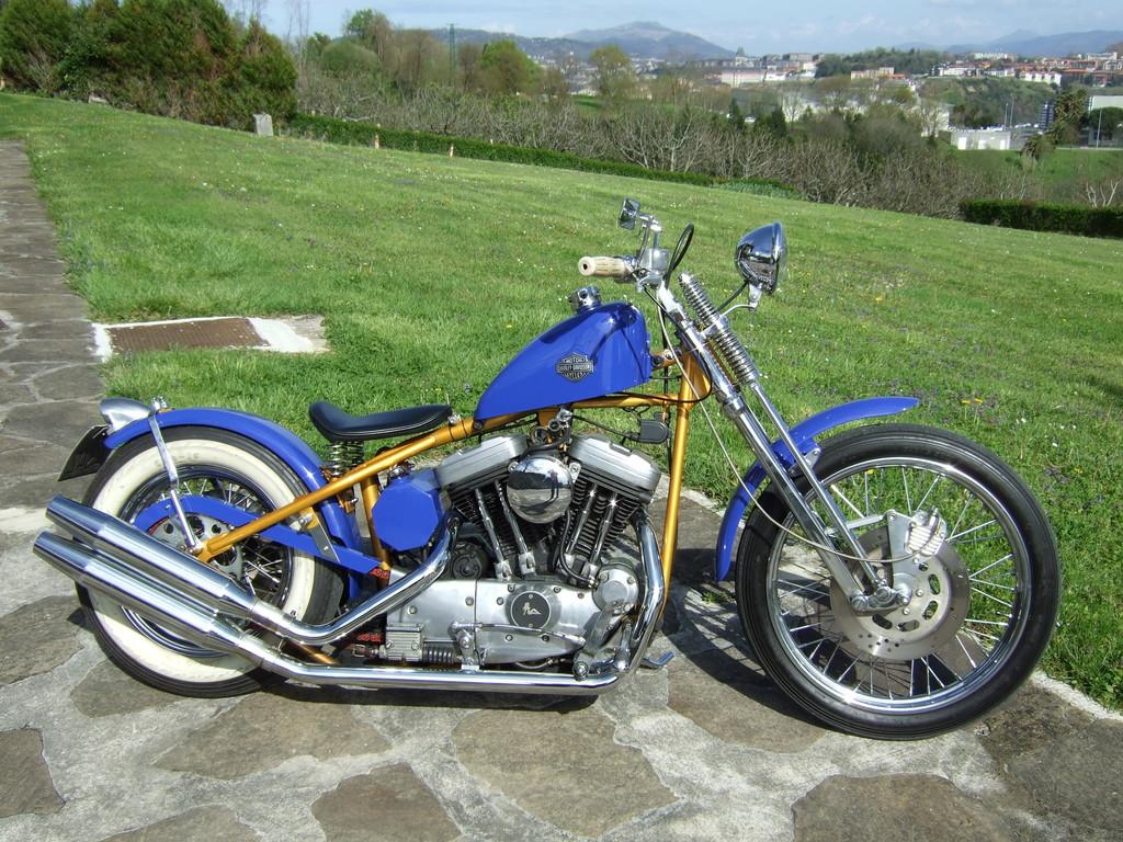 biker excalibur II: Azulita Sportster con chasis rigido