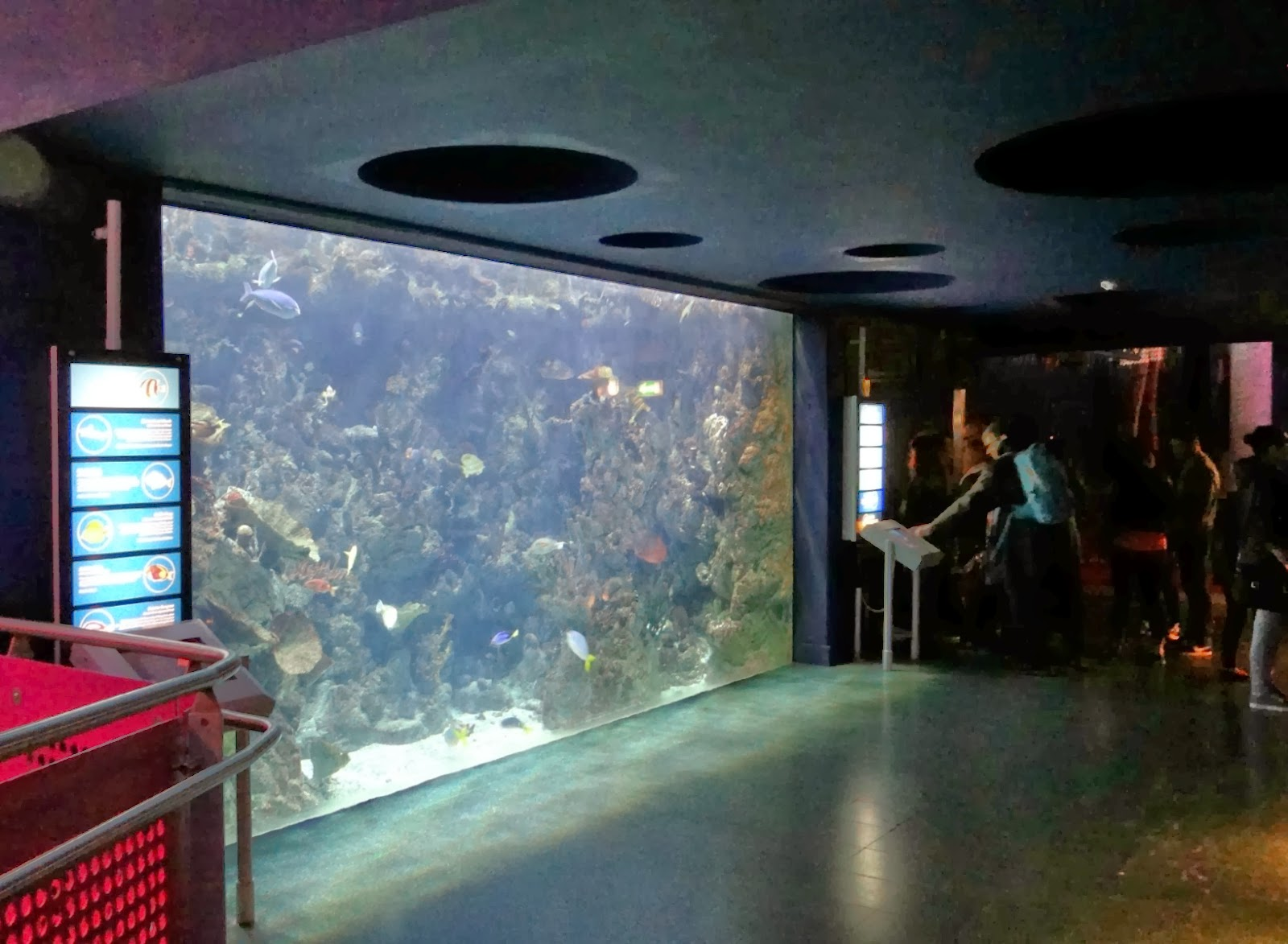 The Deep Hull, UK Aquarium, Family Day Out in Yorkshire