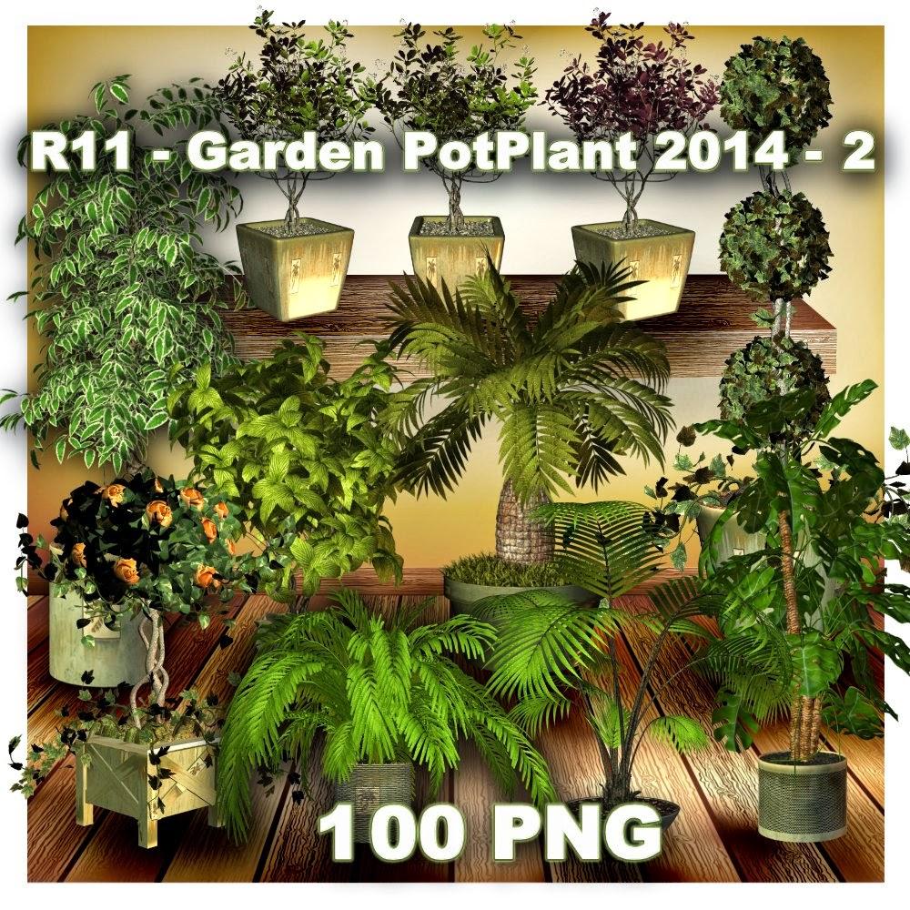http://2.bp.blogspot.com/-DJcprhCX6JA/U52pj_IJneI/AAAAAAAADY8/11T5FmHvVgo/s1600/R11+-+Garden+PotPlant+2014+-+2.jpg