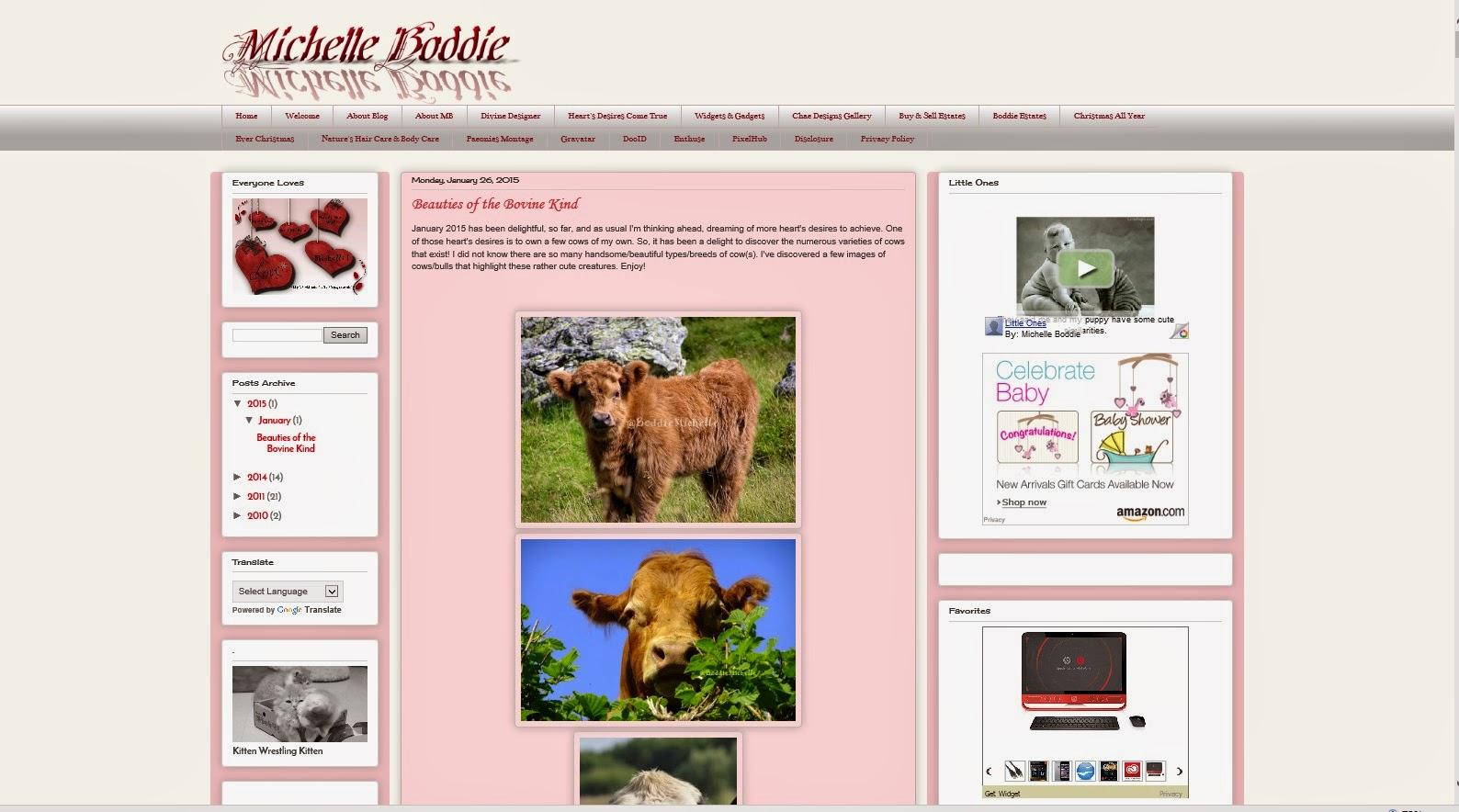 Boddie Michelle blog features some of Michelle 'Chaella' Boddie's Favorites!