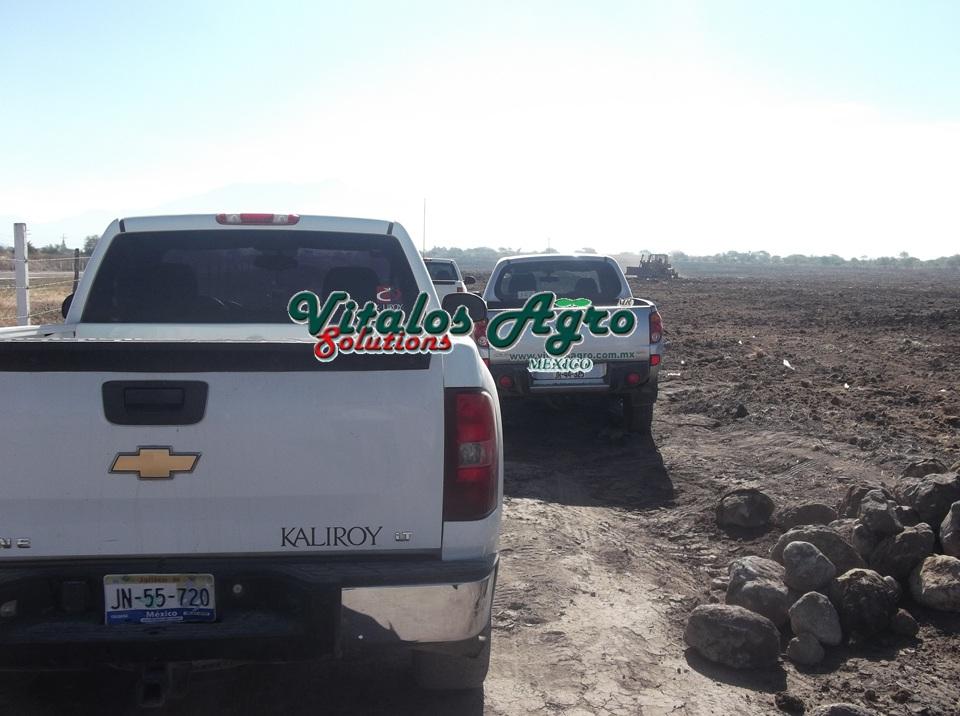 Plantaci n en bioparques san gabriel jalisco for Viveros en jalisco