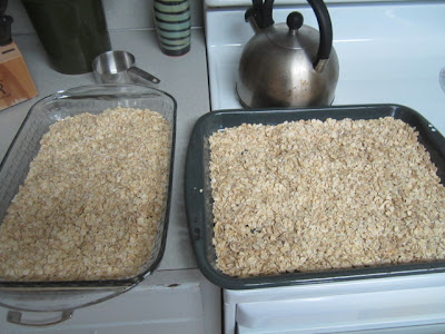 Two pans of whole oats ready for oven roasting
