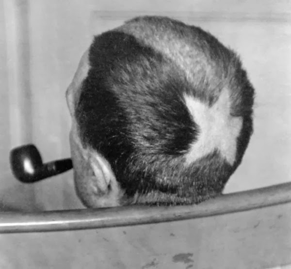 marcel duchamp, star, head shave, haircut, pipe, punk, early punk