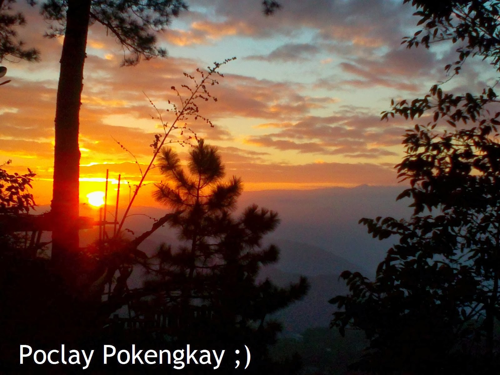 reaction to baguio city Baguio city is the coolest city in the philippinesthe weather is good and the scenery are fantastic in addition to its splendid charm and beauty are hundreds of different colorful and pretty flowering plants that scattered anywhere else in the city.