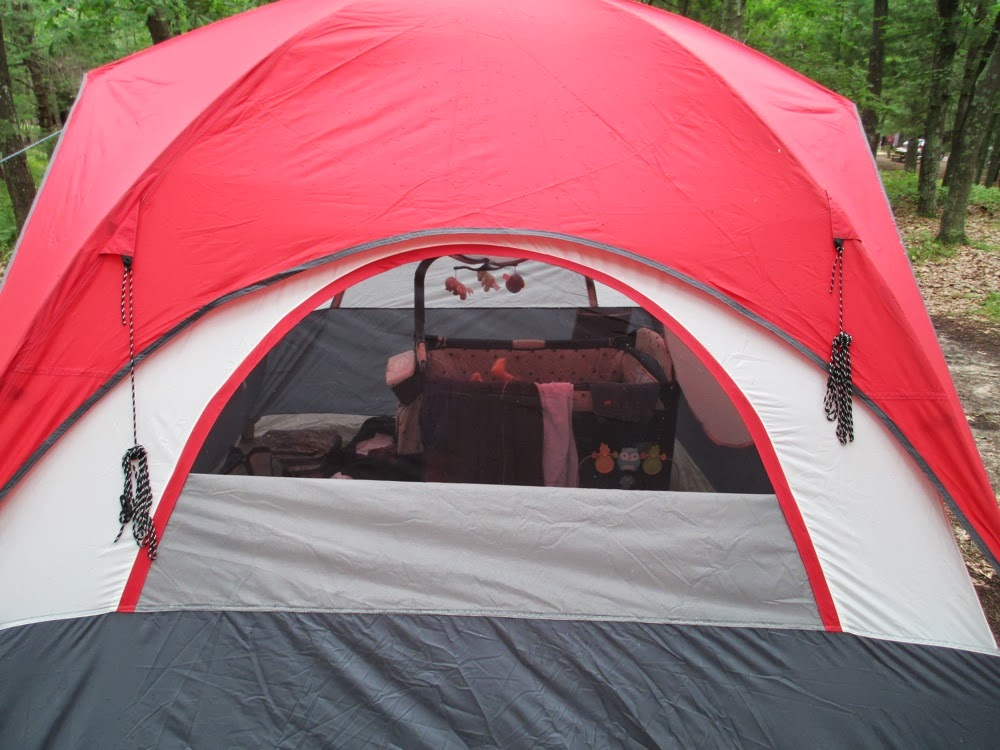 No ... & Oaken Gearbox: Gear Review: Aldi Adventuridge Dome Tent