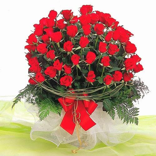 đóa hoa tình yêu