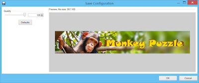 Paint.NET JPEG save dialog with 100% quality level selected