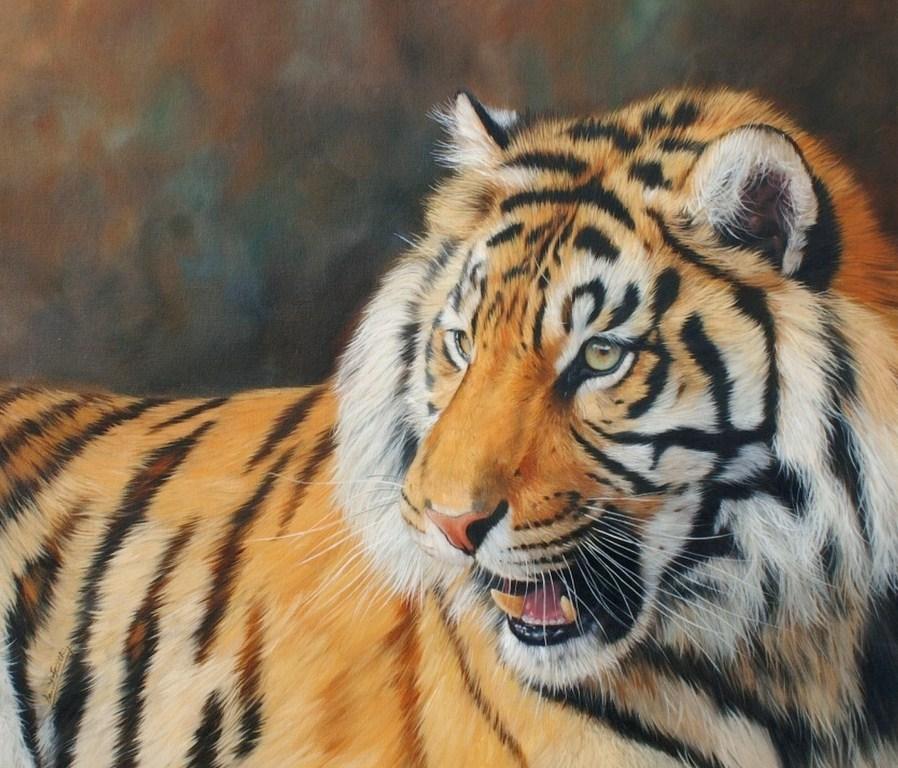Cuadros modernos pinturas y dibujos pinturas al leo de tigres hiperrealismo leo - Cuadros de cebras ...