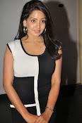 Pavani Reddy Glamorosu Photo shoot-thumbnail-4