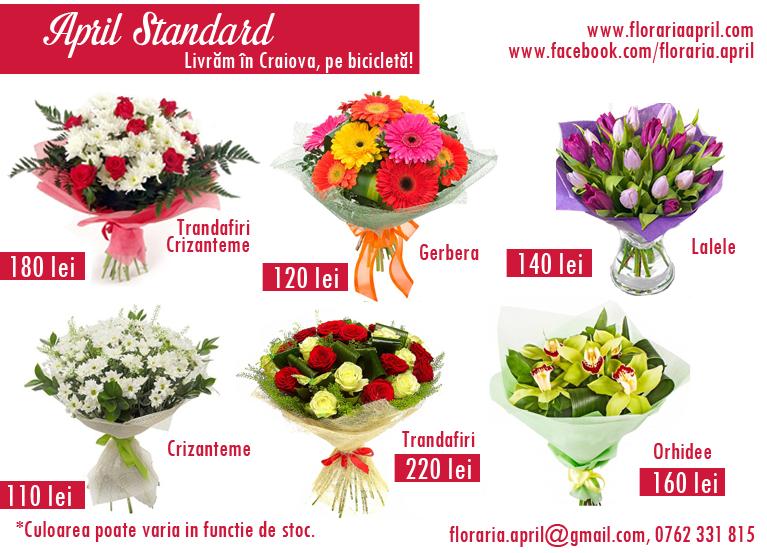 Florăria April - livrare flori pe bicicletă Craiova