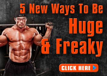 Free Bodybuilding Program ebook