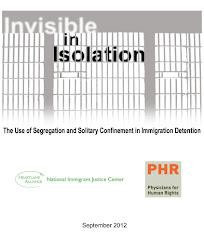 Invisible in Isolation: The Use of Segregation and Solitary Confinement in Immigrant Detention