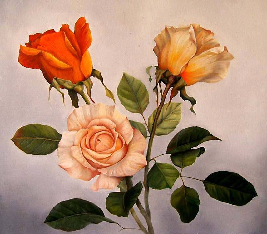 flor amarilla óleo sobre tela flor rosa hemerocalis óleo sobre tela
